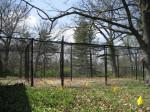 Hidden Fence